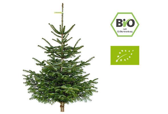onlineshop weihnachtsbaum online kaufen. Black Bedroom Furniture Sets. Home Design Ideas